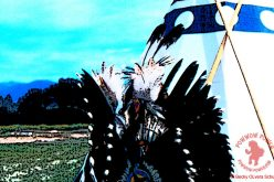 Upcoming August Powwows 2016