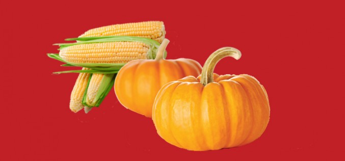 Native American Pumpkin & Corn Dessert Recipe