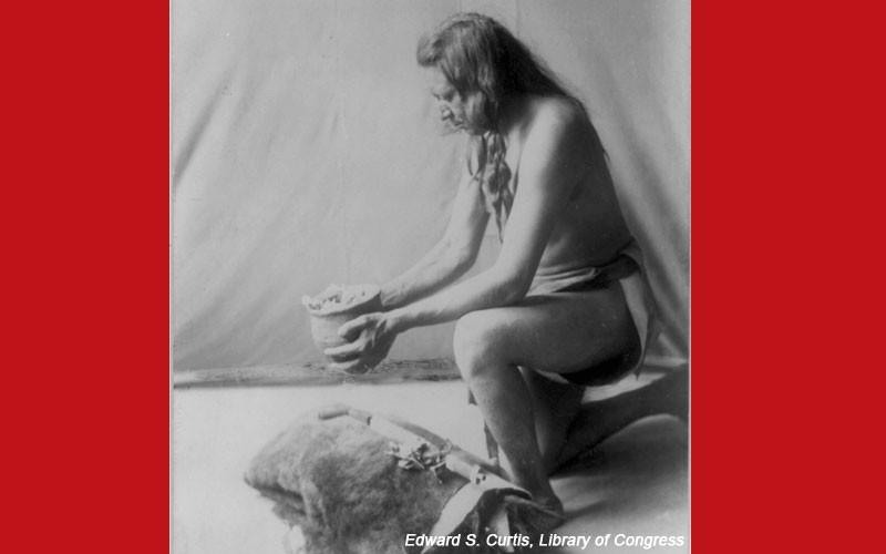 Native American Medicine: 31 Forgotten Cures